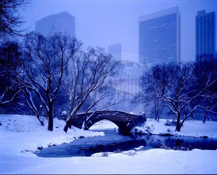 Aletrnate Central Park CentralParkGapstowBridge
